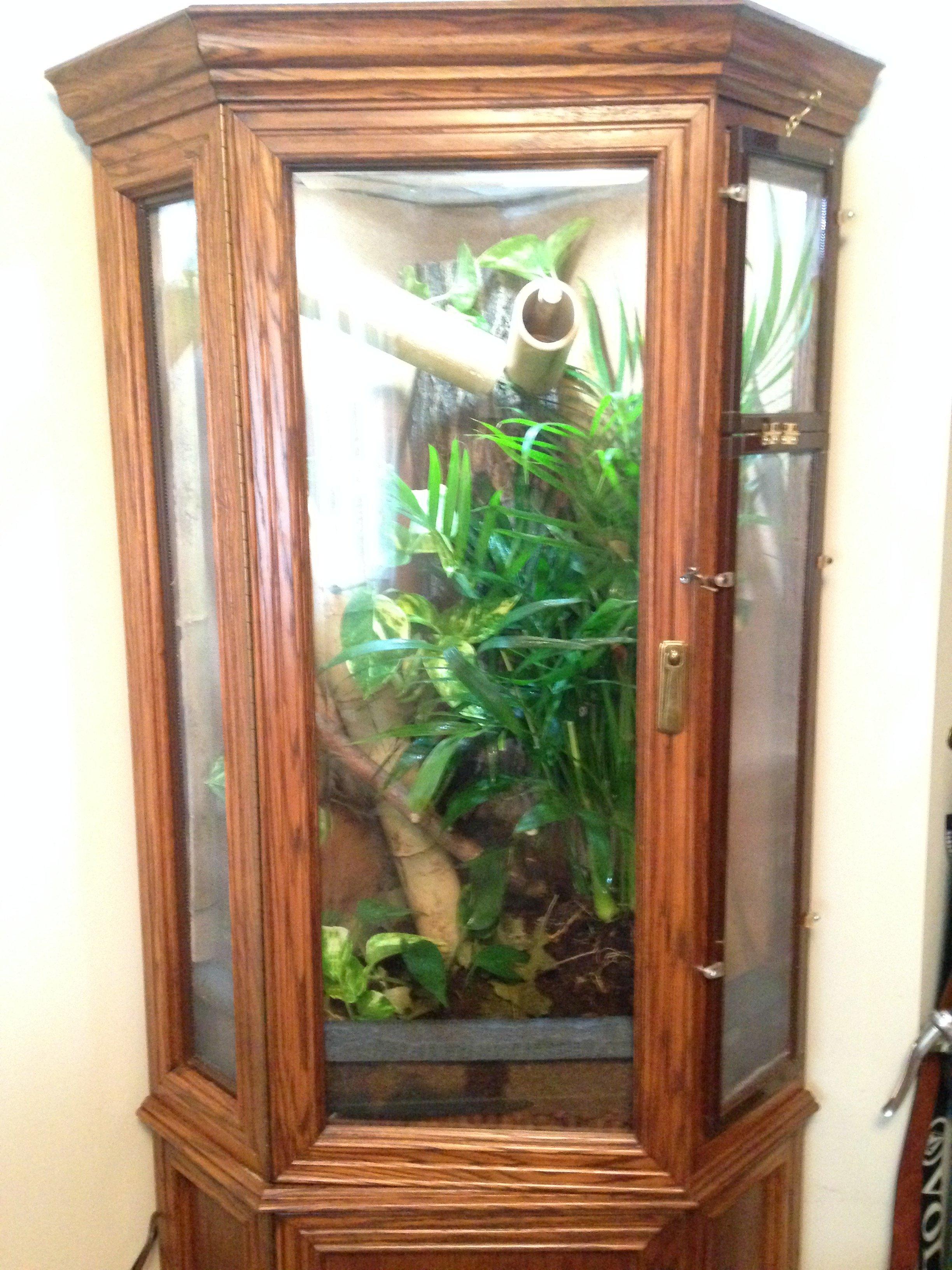 diy chameleon cage