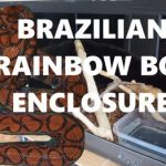 Brazilian Rainbow Boa Enclosure