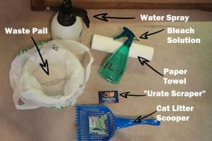 How to clean a snake tank-Supplies