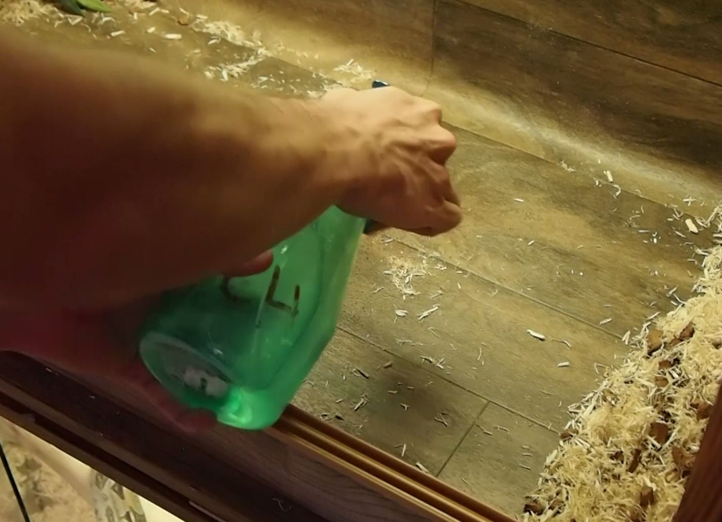 how to clean water tank with bleach