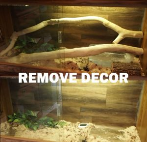 Remove all decor