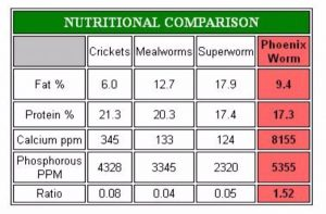Feeder Insect Nutrition Chart