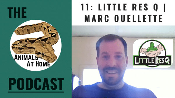 11: Little Res Q | Marc Ouellette