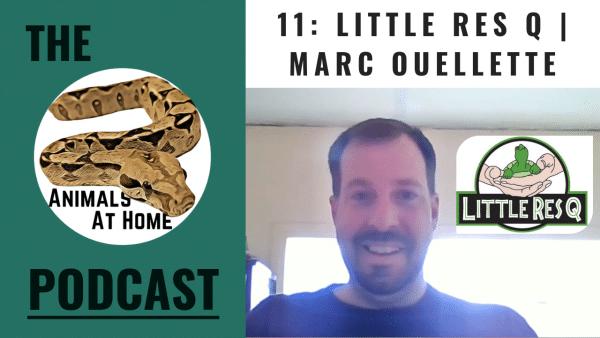11: Little Res Q | Marc Ouellette